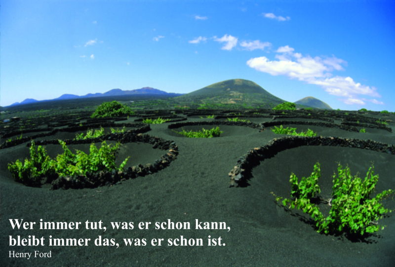 Dirk Drechsler e.U.